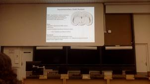 Monique Esclapez - The lateral supramammillary (SuML) - dentate gyrus (DG) pathway: properties and role in physiological condition and in experimental temporal lobe epilepsy