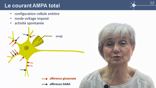 MOOC Neurophysio 4-3 Courant AMPA total (3:49)