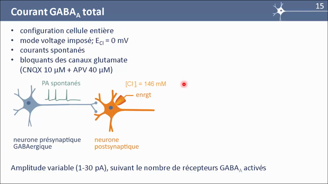 MOOC Neurophysio 5-4 Courant GABA-A total (3:37)