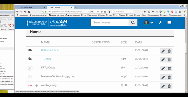 Document your project progress using EFOLIAM