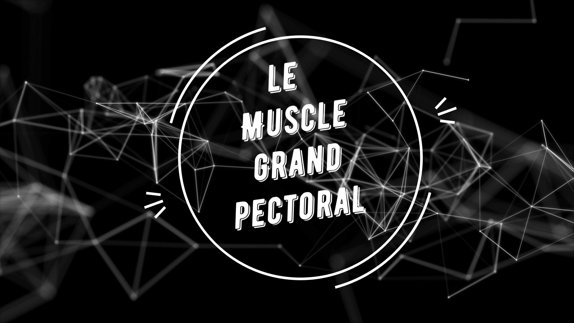 Étirement passif du muscle grand pectoral