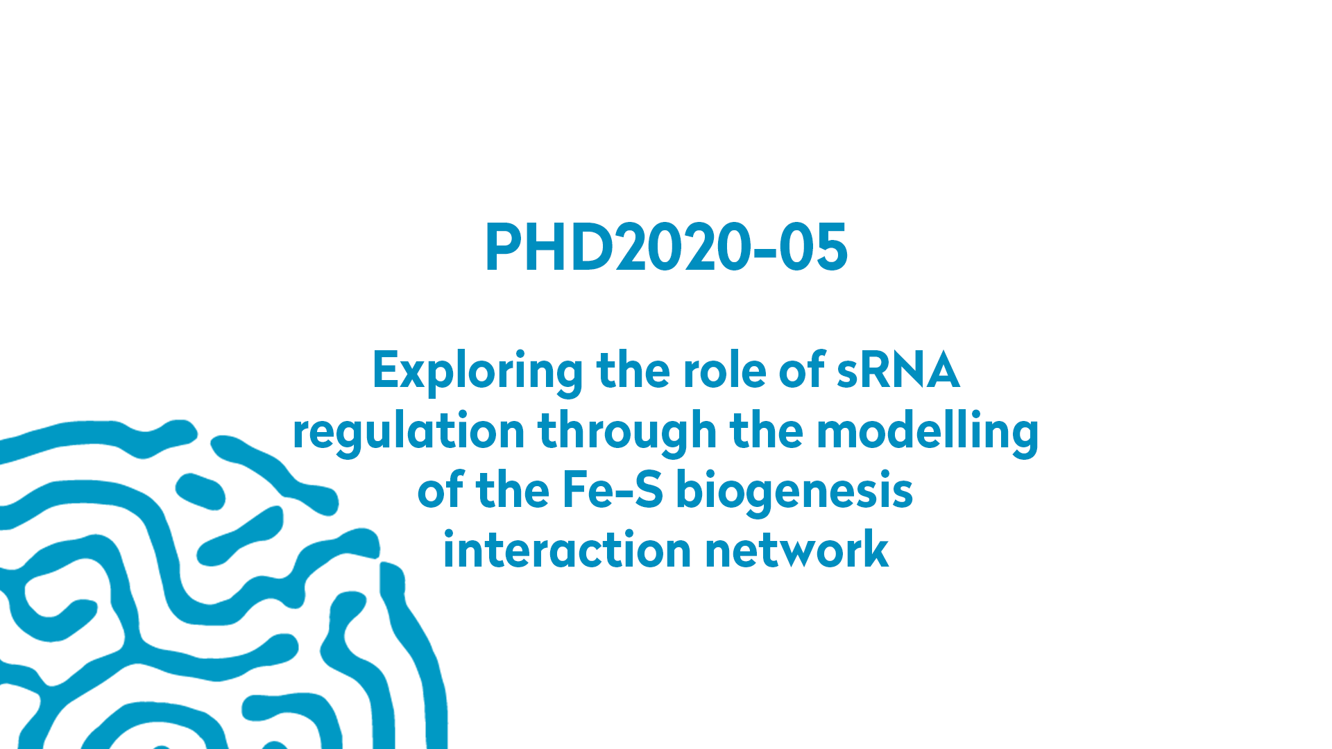 PHD2020-05 | Exploring the role of sRNA regulation through the modelling of the Fe-S biogenesis interaction network