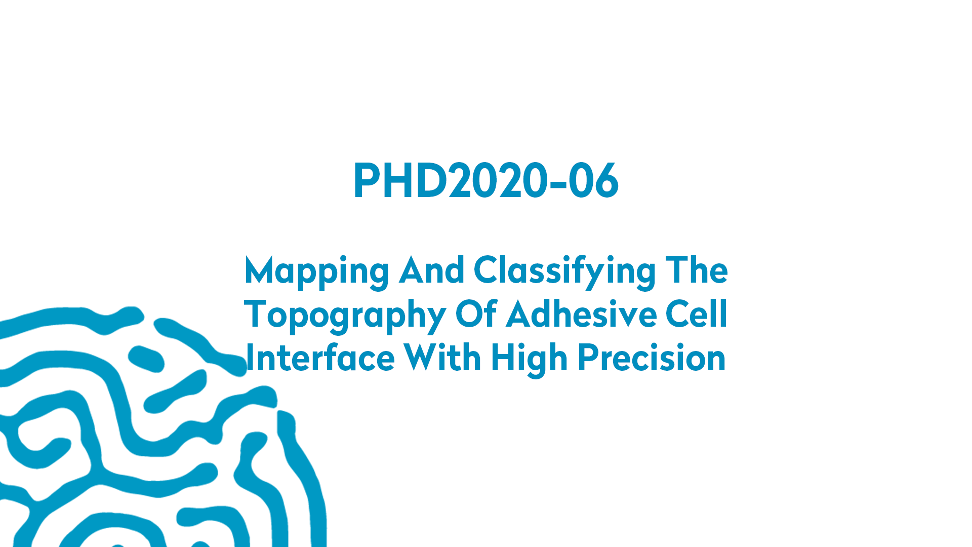 PHD2020-06 | Mapping and classifying the topography of adhesive cell interface with high precision