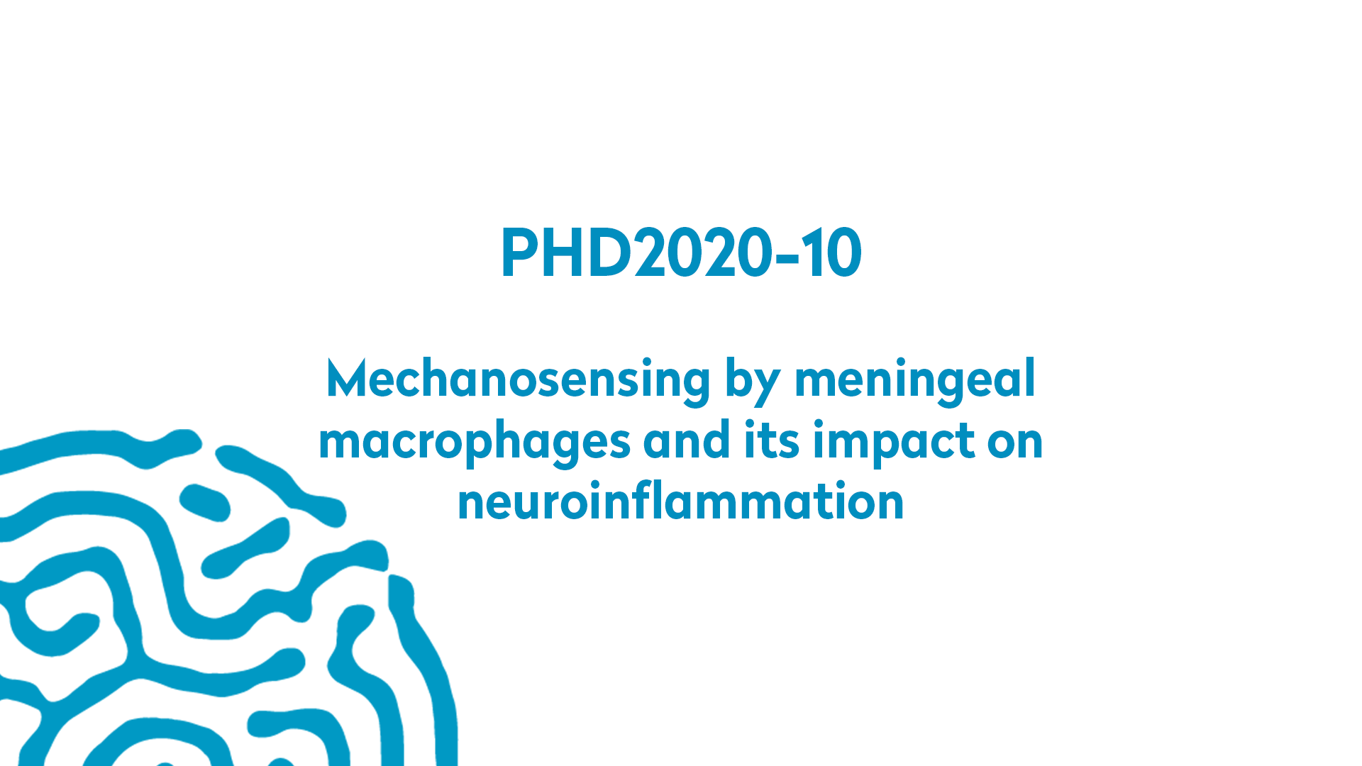 PHD2020-10 | Mechanosensing by meningeal macrophages and its impact on neuroinflammation