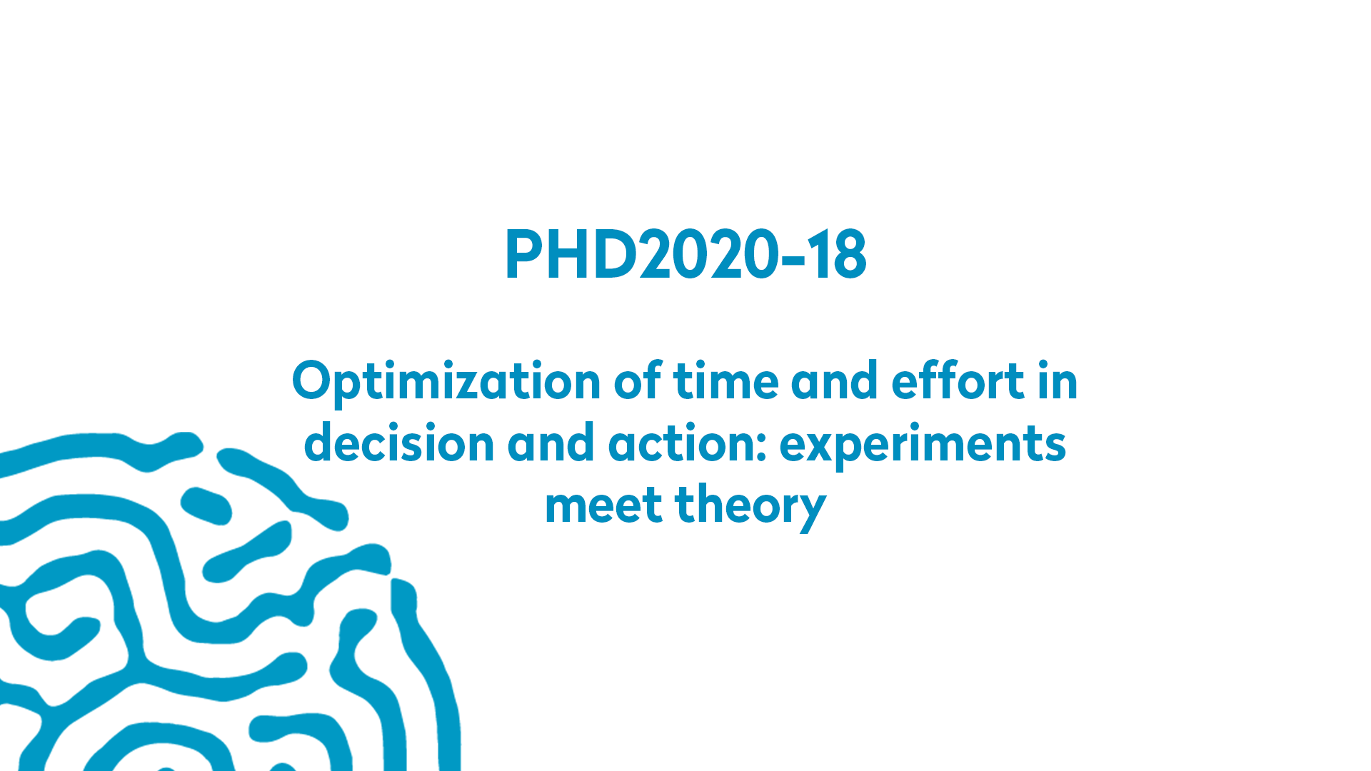 PHD2020-18 | Optimization of time and effort in decision and action: experiments meet theory