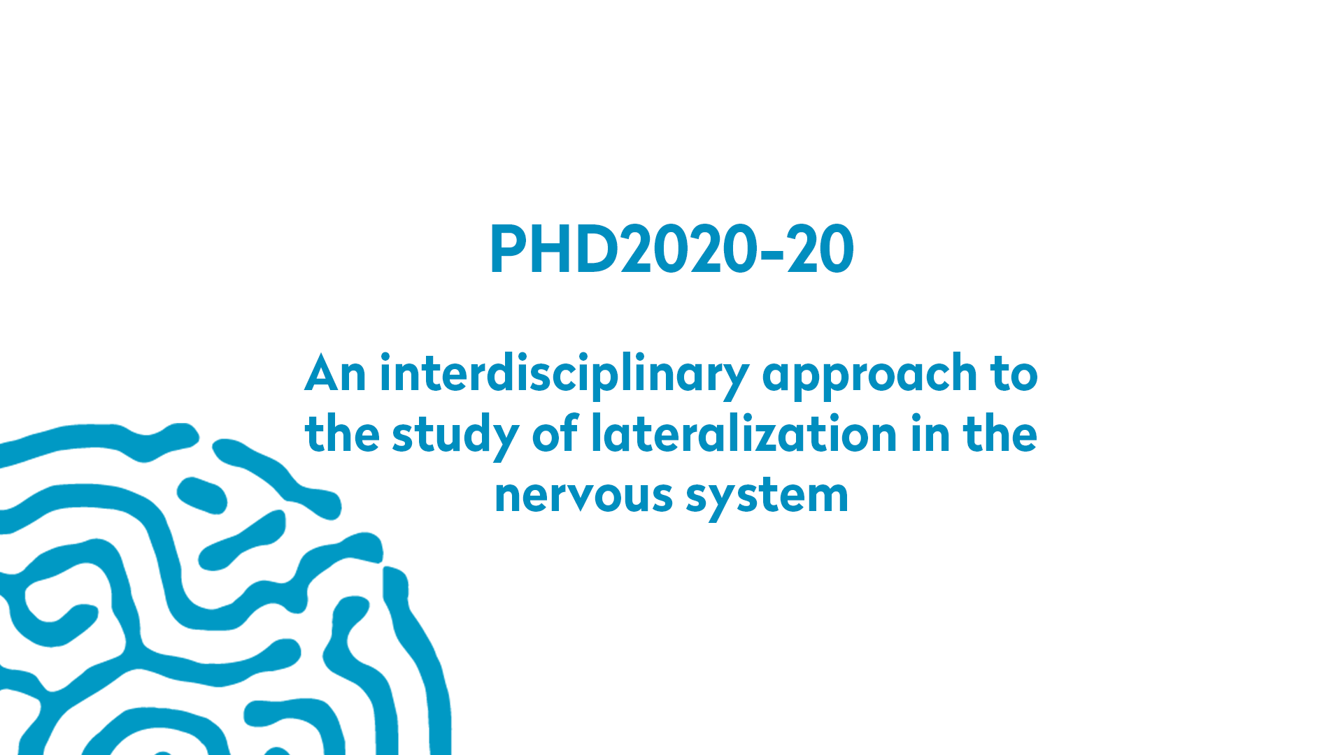 PHD2020-20 | An interdisciplinary approach to the study of lateralization in the nervous system